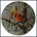 The Cardinal Collector Plate by Kevin Daniel
