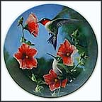 The Hummingbird Collector Plate by Kevin Daniel