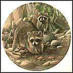 The Raccoon Collector Plate by Kevin Daniel