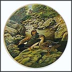 The Gadwall Collector Plate by Bart Jerner