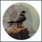 Peregrine Falcon Collector Plate by David Smith