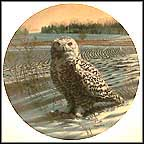 The Snowy Owl Collector Plate by James Beaudoin