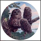 Perfect Perch: Barred Owls Collector Plate by James Beaudoin MAIN