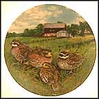 The Quail Collector Plate by Wayne Anderson MAIN