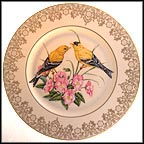 American Goldfinch Collector Plate