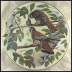 American Falcon Collector Plate by Jim Foote