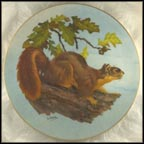 Fox Squirrel Collector Plate by Lee LeBlanc