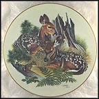 White-Tailed Fawns Collector Plate by Richard Timm