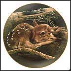 Newborn Fawn Collector Plate by Sally Miller