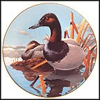 Canvasbacks Collector Plate by Rod Lawrence