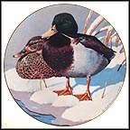 Mallards Collector Plate by Rod Lawrence