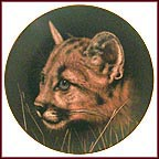 Cougar Cub Collector Plate by Qua Lemonds