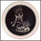 Guest For Dinner Collector Plate by Rudy Droguett
