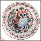 Whoo Me? Collector Plate by Heidi Lindy MAIN