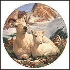 Dall Sheep Collector Plate by Mike Jackson