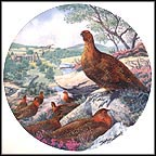 Red Grouse Collector Plate by Derek Braithwaite