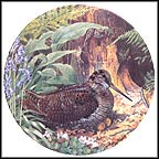 Woodcock Collector Plate by Derek Braithwaite