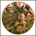 The Hunter Collector Plate by Andrew Wyeth