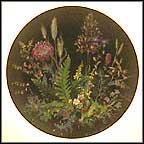 Forest Strawberries In The Moss Collector Plate by Helmut Meiner
