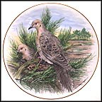 Mourning Dove Collector Plate by A. J. Heritage MAIN