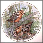 American Woodcock Collector Plate by A. J. Heritage MAIN