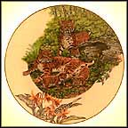 Bobcat Collector Plate by Sy And Dot Barlowe
