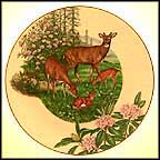 White-Tailed Deer Collector Plate by Sy And Dot Barlowe