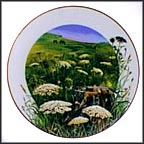 Queen Anne's Lace Collector Plate by Ralph Mark