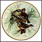 Firecrest Collector Plate by Ursula Band MAIN