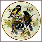 Great Titmouse Collector Plate by Ursula Band