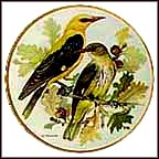 Golden Oriole Collector Plate by Ursula Band