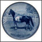 Pinto Collector Plate by Poul T. Christensen