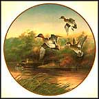 Green-Wings At The Morning Marsh Collector Plate by Lynn Kaatz