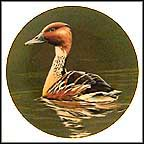 Fulvous Whistling Duck Collector Plate by Burton Moore, Jr.