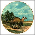 Black-Footed Ferret Collector Plate by Will Nelson
