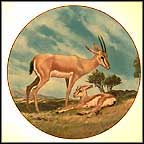 The Slender-Horned Gazelle Collector Plate by Will Nelson