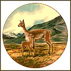 The Vicuna Collector Plate by Will Nelson