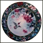 The Anna's Hummingbird Collector Plate by Lena Liu