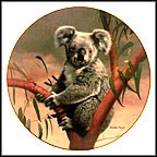 The Koala Collector Plate by Charles Fracé