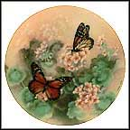Monarch Butterflies Collector Plate by Lena Liu