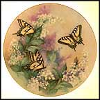Western Tiger Swallowtails Collector Plate by Lena Liu