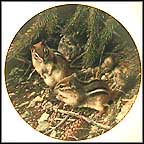 Beneath The Pines: Chipmunks Collector Plate by Carl Brenders