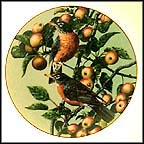 Summer Gold: The Robin Collector Plate by Carl Brenders