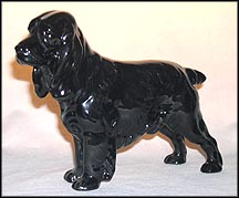 Cocker Spaniel Ch. 'Lucky Star of Ware' MAIN