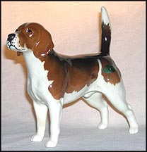 "Beagle ""Wendover Billy"" MAIN"