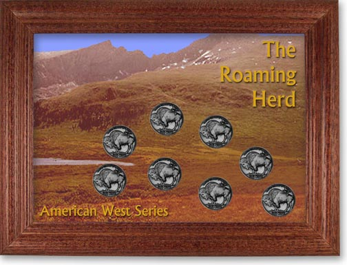 Roaming Herd Buffalo Nickel Collector Frame LARGE