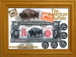 The American Buffalo Coin Collection MAIN