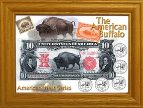 The American Buffalo Coin Collection