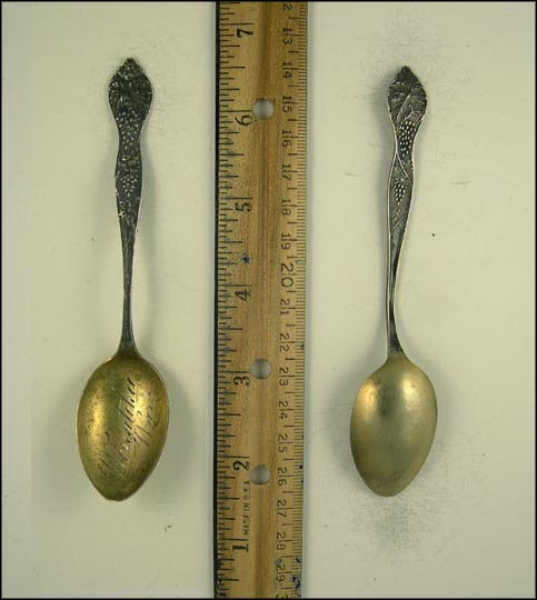 Grape Clusters, Wenatchee, Wash, Wenatchee, Washington Souvenir Spoon