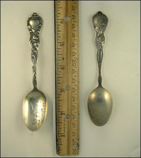 Hemet, California Souvenir Spoon